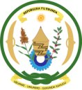 Nyanza District